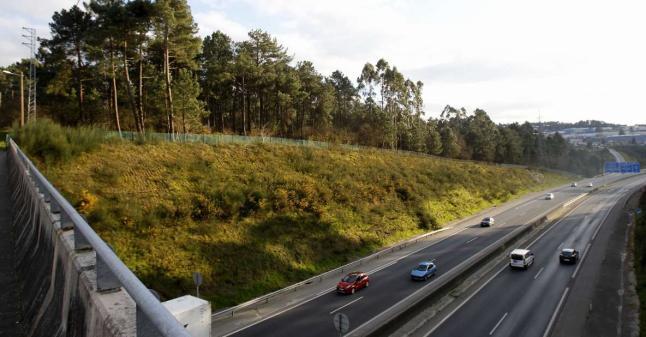 Imaxe de monte Liñeiriños afectado polo proxecto.