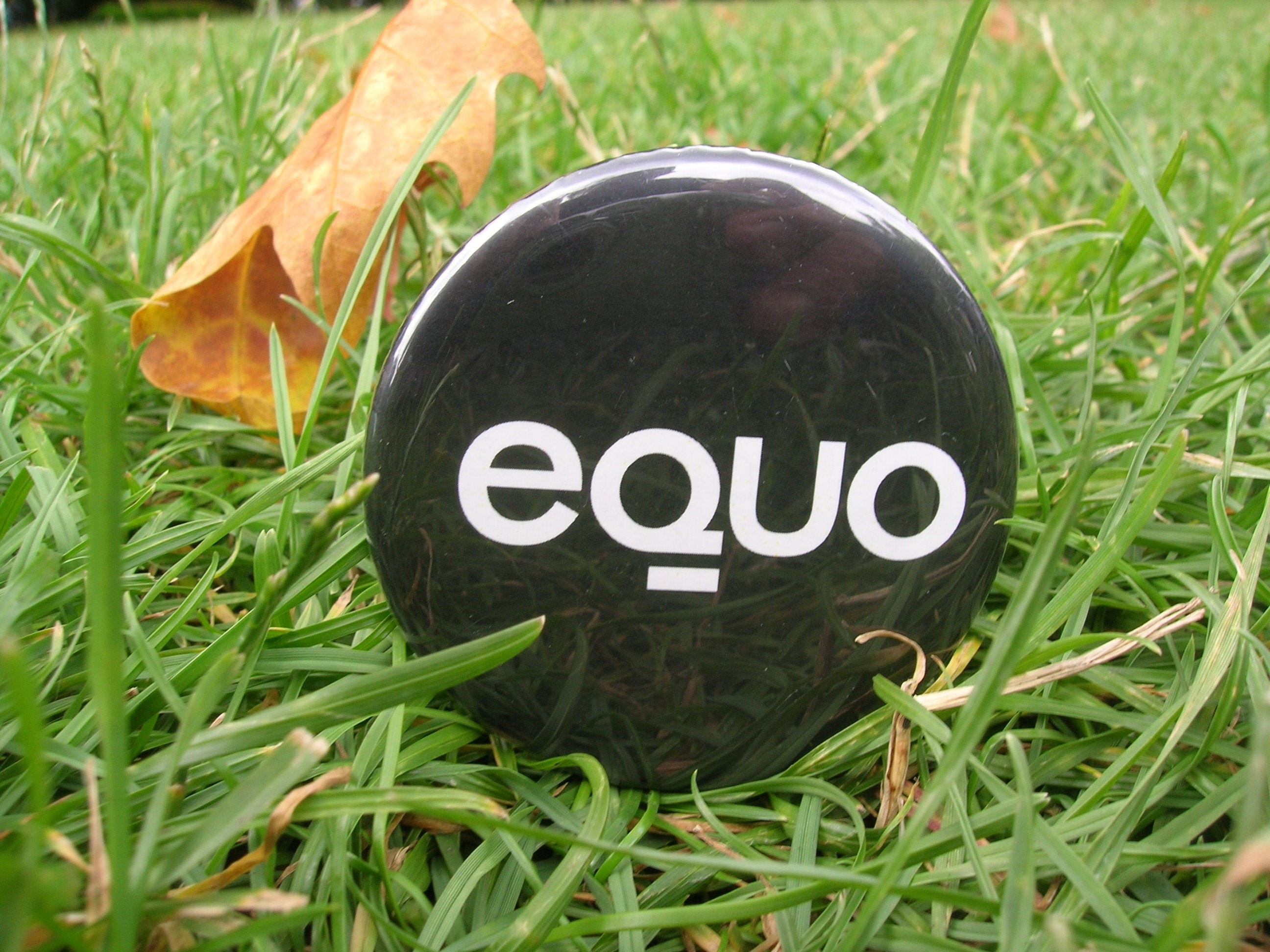Foto dunha chapa de EQUO entre a herba