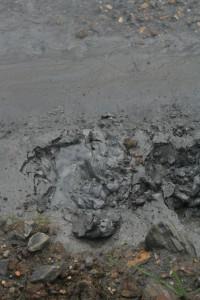 Aspecto dos lodos no Regato Valcovo