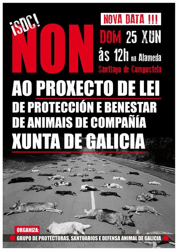 non-a-lei-de-proteccion-e-benestar-animais-compañia-xunta-galicia
