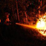 EQUO Galicia pide medidas eficaces para atallar a onda de incendios forestais