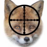 Contra a barbarie da caza de raposos.
