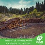 A protección dos ecosistemas, a primeira barreira contra as pandemias