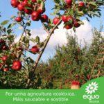 EQUO Galicia propón un gran plan para a agricultura ecolóxica galega, para converternos nunha referencia a nivel europeo neste eido