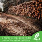 En prol dunhas políticas forestais ecoloxistas
