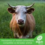 Precisamos un modelo alimentario compatible co benestar animal