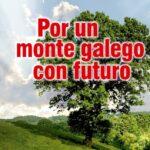 Verdes EQUO Galicia considera que a revisión do plan forestal é unha pésima lei para o medio natural e o mundo rural
